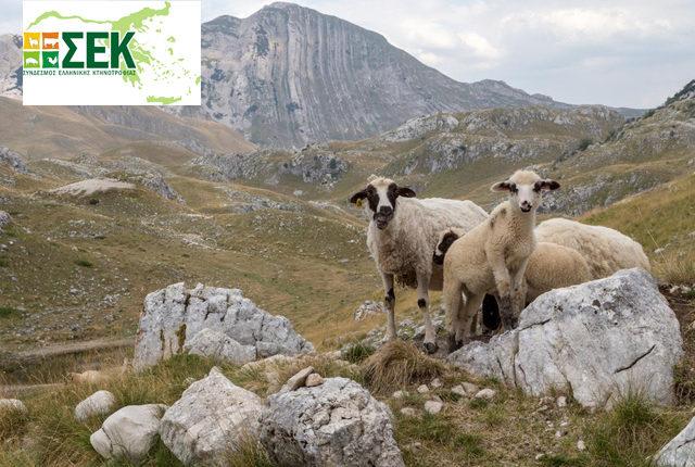 Ο ΣΕΚ καλεί όλους τους κτηνοτρόφους σε μαζική κινητοποίηση στη Θεσσαλονίκη στις 24/5