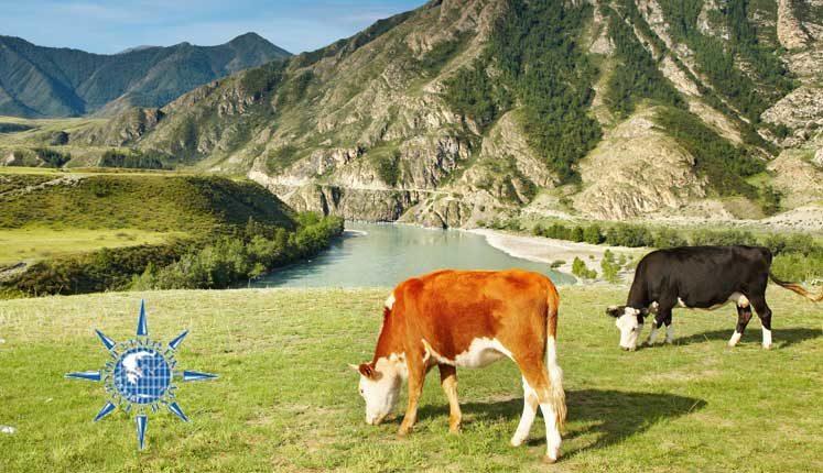 Τα πρόσφατα στοιχεία της ΕΛΣΤΑΤ για την πορεία γεωργίας & κτηνοτροφίας