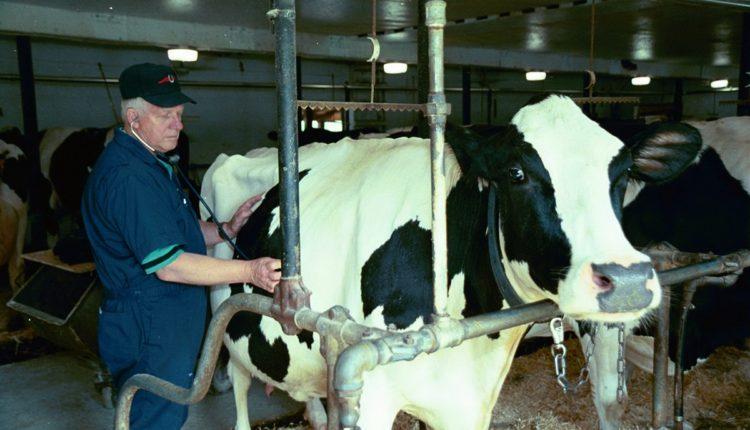 Προσλήψεις 180 κτηνιάτρων, γεωπόνων και ιχθυολόγων μέσω ΑΣΕΠ στο ΥΠΑΑΤ