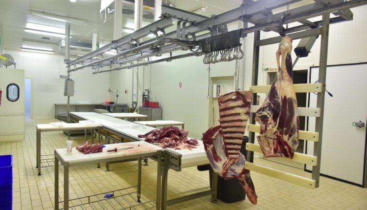 Ι.Σ.Ε.Κ. Μπατσολάκης: Έναρξη νέου προγράμματος εκπαίδευσης για την διοίκηση Μονάδων Κρέατος