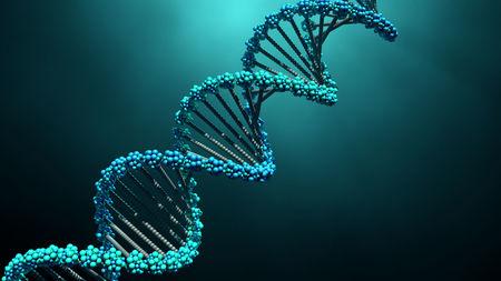 Επιστήμονες δημιούργησαν γουρουνάκια με DNA πιθήκου