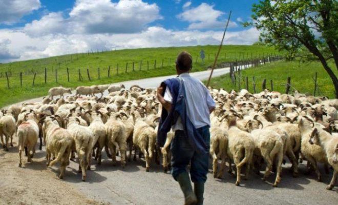 Μ. Βορίδης: Άμεση απονομή σύνταξης στους αγρότες με ένα «κλικ»