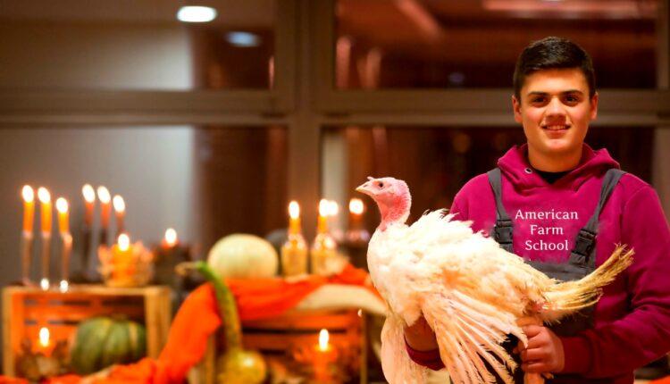 Αμερικανική Γεωργική Σχολή: Η «σταρ» του εορταστικού τραπεζιού